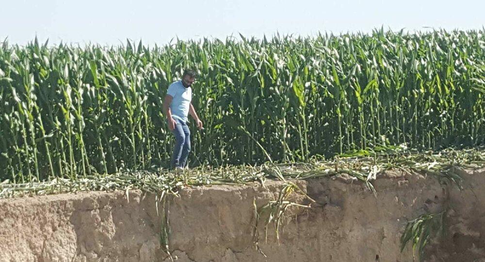 Konya Obruk Mısır Ekili Tarlada 25 Metre Çapında Obruk Oluştu!