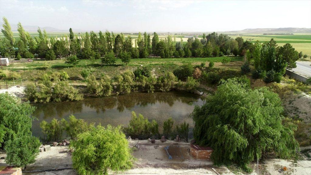 Konya'daki Çorak Araziyi Vahaya Çevirdi!