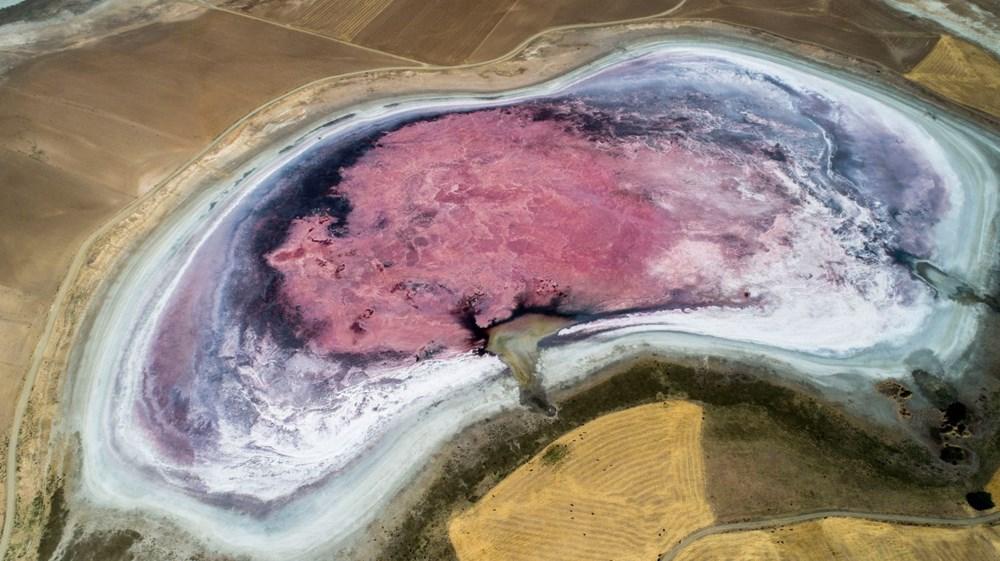 Konya'daki Göl Kurudu Flamingoların Uğrak Yeri Artık Yok! (1)
